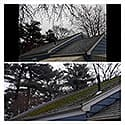 Roof cleaning  19